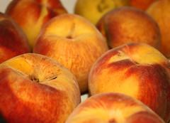 Peaches 3 (netman007 (Andre` Cutajar)) Tags: blackandwhite orange dog brown cute nice expressions malta andre peaches cutajar netman007