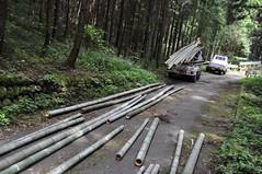DSC_1074 (uruuruurusu) Tags: house bamboo remake