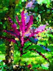 Color Riot (Sultry/sulky/silly) Tags: gardens digital painting texas wells clark mineral