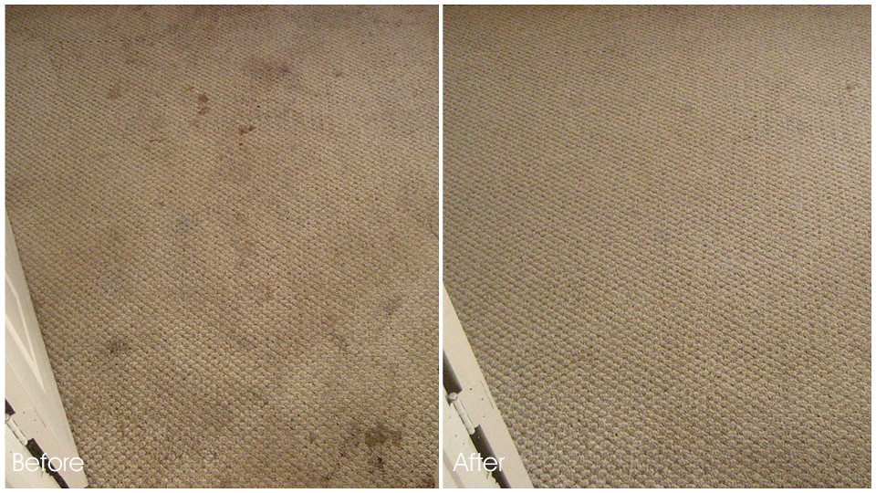 Santa Monica Carpet Cleaning