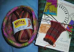 Regia sock 2