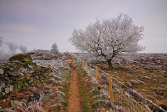 A Walk on the Cold Side - 1 (mijoli) Tags: england derbyshire explore nationaltrust peakdistrictnationalpark sigma1020 stantonmoor lightzone digitalphotoprofessional canon50d platinumphoto stantoninthepeak