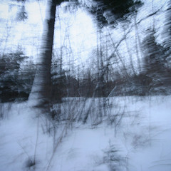 (-Antoine-) Tags: park trees winter snow canada motion blur tree nature forest canon square movement blurry quebec snowy hiver north sigma arbres motionblur qubec 10d shake invierno nordic neige 1020mm 2008 1020 foret arbre parc saguenay gauthier fort nord flou mouvement chicoutimi boreal carr taiga wintery nordique sigma1020mm boreale borale boral bouge sigma1020 taga rosaire hivernal rosairegauthier borealie saguenaylacstjean saguenaylacsaintjean qubec borealia nordicite nordicity rosairegaut0114 antoinerouleau