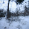 (-Antoine-) Tags: park trees winter snow canada motion blur tree nature forest canon square movement blurry quebec snowy hiver north sigma arbres motionblur québec 10d shake invierno nordic neige 1020mm 2008 1020 foret arbre parc saguenay gauthier forêt nord flou mouvement chicoutimi boreal carré taiga wintery nordique sigma1020mm boreale boréale boréal bouge sigma1020 taïga rosaire hivernal rosairegauthier borealie saguenaylacstjean saguenaylacsaintjean qužbec borealia nordicite nordicity rosairegaut0114 ©antoinerouleau