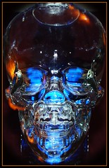 Crystal Head Vodka (John Petrick) Tags: blue orange glass catchycolors bottle cool vodka orangelight bluelight fiatlux danaykroyd crystalskull notindianajones goldstaraward crystalheadvodka vodkaskull glassandcolor notindysskull