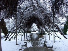 La Vega nevada