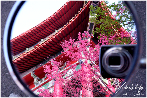 [台北 遊]*北投 復興三路 & 吳氏宗祠 賞櫻花   Yukis Life by yukiblog.tw