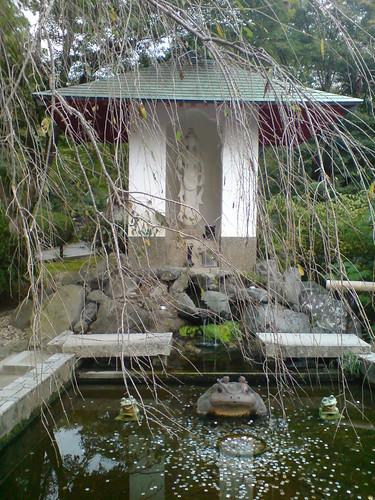 你拍攝的 天竜寺。