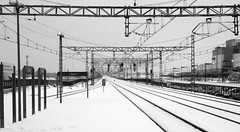 Recuerdos de un invierno pasado. Last winter memories. (darkside_1) Tags: madrid winter bw espaa snow cold blancoynegro nieve invierno fro alcaldehenares supershot goldstaraward sergiozurinaga bydarkside darkside1