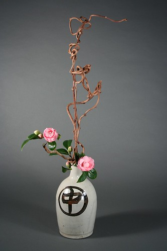 Camellias and Kiwi Branches