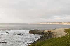 La Jolla Cove (Rocky413) Tags: tokina lajollacove tokinaaf1224mmf4 rokchoi