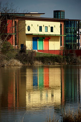 Colorful Reflection