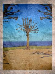 Ausblick (Badenfocus_Thanks for 550k views) Tags: tree texture arbre baum textur landscapesdreams treesdiestandingup youscore mygearandme mygearandme1