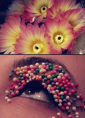 Color ([L] di .zuma) Tags: colors canon fiori colori occhio zucchero