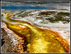 Yellowstone National Park, Earthquake Geology, Yellow Mineral Flows of Biscuit Basin (moonjazz) Tags: travel white west color nature water yellow energy rocks earth science best steam yellowstonenationalpark wyoming geology geyser earthquakes hydrothermal frhwofavs