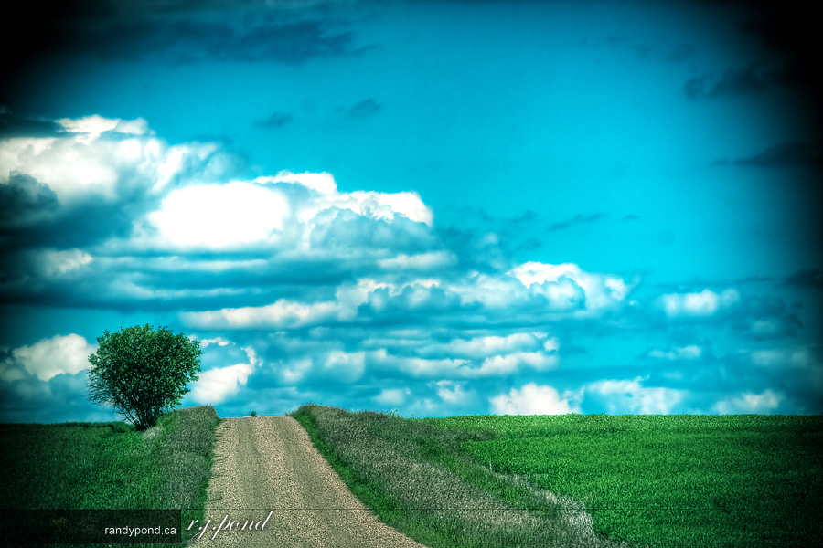~ Lonely Road ~