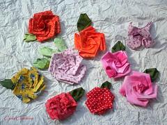 'Rosa de tecido' - base tsuru - com pap (Carla Cordeiro) Tags: flores 3d origami handmade feitomo fuxico folded rosas tsuru dobradura kanzashi vidasimples fabricflower flordepano flordeorigami fabricfolding floresdetecido foldedflowers linhaeagulha agulhaelinha origamiemtecido tecidotingido flordefuxico rosasdetecido tingidopordivnia dobraduradetecido orinuno