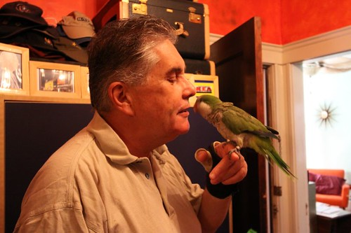 Peter and the talking quaker parrot...