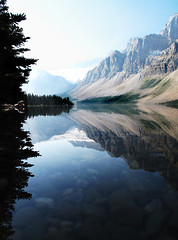 Bow Lake Reflection (chona_p) Tags: lake canada reflection jasper alberta banff bowlake winnerbc