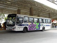 FPM74 Ônibus Urbano - Jundiaí (Fernando Picarelli Martins) Tags: bus ônibus autobus jundiaí ônibusurbano jundiaíterradauva terminalvilaarens viaçãoleme