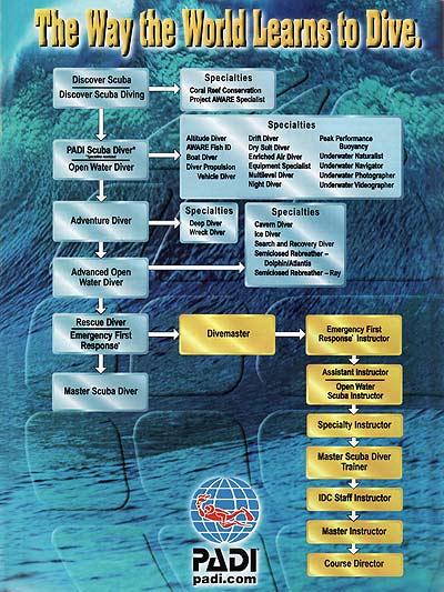 หลักสูตรการเรียนดำน้ำของ PADI
