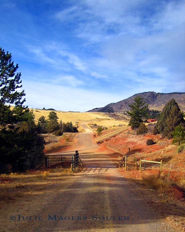 landscape photo of red dirt country road with cattle gate in northern Colorado