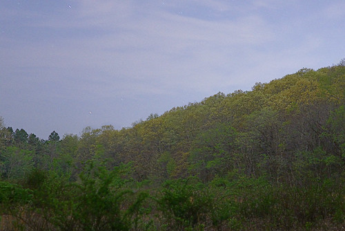 Forest 44 Conservation Area, near Valley Park, Missouri, USA - wooded hillside at dusk
