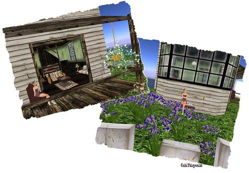 home & garden 2