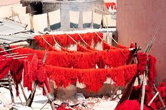 Dyeing souqs (Souk des Teinturiers), Marrakech, Maroc (Morocco) (Loc BROHARD) Tags: africa color colors doors couleurs tapis mosque morocco berber spices maroc marrakech maghreb souk marrakesh dye dyeing souq menara epices ported riad koutoubia suk suq marrakesch westernsahara mdina gueliz tissus djemaaelfna redcity  sooq teinture saadiantombs benyoussefmadrassa  teinturier babagnaou marake soukdesteinturiers almarib  murakush esouk