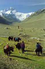 Jomo Langma,Everest,Rongbuk,8848 metres (reurinkjan) Tags: 2002 nature nikon tibet everest rongbuk tingri jomolangma tibetanlandscape janreurink བོད། བོད་ལྗོངས།