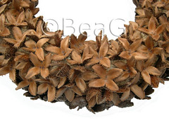 Another Beech-Nut Thingy Wreath, detail (Nog een Beukenootjesdingesen Krans, detail) (Made by BeaG) Tags: wreath beechnuts beechnutsthingywreath beukenootjesdingesenkrans krans nature brown natural craftingwithnature homedecor homedecoration round circle pretty unique design handmade beag artist designer original creativedesigner creativity creation kunst kunstenares ontwerpster originaldesigner ooak oneofakind unicum unica uniquedesign uniekontwerp designedandmadebybeag ontworpenengemaaktdoorbeag handgemaaktekrans gedecoreerdekrans kransmaken belgium belgi doorgift doordecoration walldecoration walldecor tabledecoration fireplacedecoration doordecor tabledecor couronne recycledecor recyclehomedecor designerwreath designerwreaths