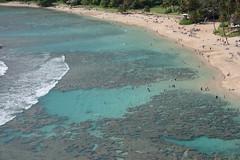 Wading, Snorkling, and Laying Out (DJOtaku) Tags: hawaii oahu hanaumabay