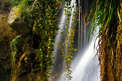 Lean Pickings (jasontheaker) Tags: uk england beautiful landscape waterfall stream yorkshire peaceful spray strid longexposure jasontheaker boltonabbey valleyofdesolation leanpickings