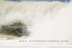 20090208_4152 copy (simsurf) Tags: ocean surf wave australia surfing queensland goldcoast snapperrocks
