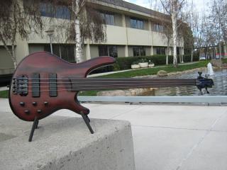 bass guitar cort fretless