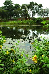Lily pond, beautiful garden at    Jatiyo Smriti Soudho Independence memorial park, Savar, Dhaka, Bangladesh (Wonderlane) Tags: day cloudy dhaka dhania bangladesh lilypond savar 1685 wonderlane beautifulgarden jatiyosmritisoudho  independencememorialpark jatiyosmritisoudhoindependencememorialpark