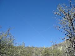 x marks the spot (azhiker_grrl) Tags: arizona sky nature tucson hike ridge chemtrails xmarksthespot pontatoc
