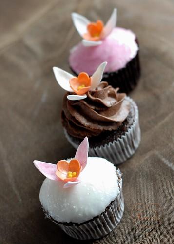 Blooming Cupcakes