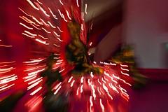 (On the other hand) as a source, it is the origin of the diversity of all the bliss of Nirvana and all of the sorrow of Samsara. (Wonderlane) Tags: california ca modern self naked lights is other all hand with nirvana contemporary buddha buddhist diversity buddhism it seeing mind through awareness bliss enlightenment bodhisattva sorrow liberation source sanmateo origin samsara on enlighten transcending wonderlane 3346 vintagechairs vintagetable buddhistimagery selfliberationthroughseeingwithnakedawareness bypadmasambhava ontheotherhandasasourceitistheoriginofthediversityofalltheblissofnirvanaandallofthesorrowofsamsara itistheoriginofthediversityofalltheblissofnirvanaandallofthesorrowofsamsara