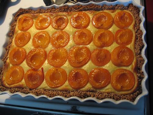 foodporn: apricot ricotta hazelnut tarte