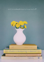 pom poms. (polkadotandplaid) Tags: stilllife flower yellow canon vase 5d pompoms markii