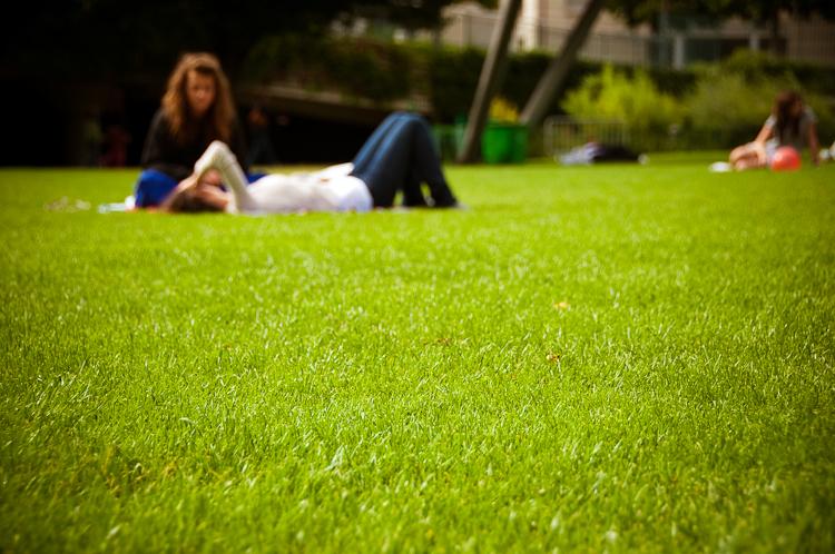 L'odeur de l'herbe