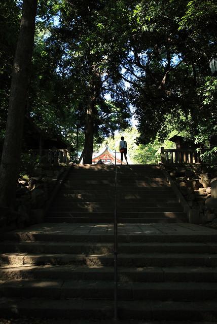 木陰の参道