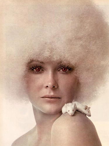 Photo Graphis '71: Albino