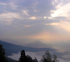 Mystic Kalimpong (kaipukur) Tags: trees sun india mist mountains nature beautiful mystery clouds ray peaceful hills scenary darjeeling sober picnik kalimpong westbengal rubyphotographer urvision