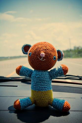 bear on the road!