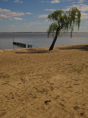 beach, Carmelo, Uruguay