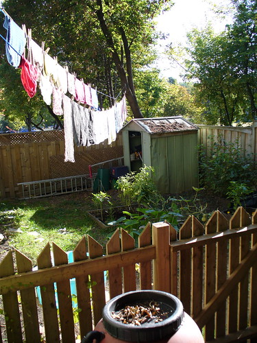 side yard with laundry