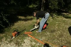_MG_6302.JPG (zimbablade) Tags: trees sleepyhollow dougmiller videopoem