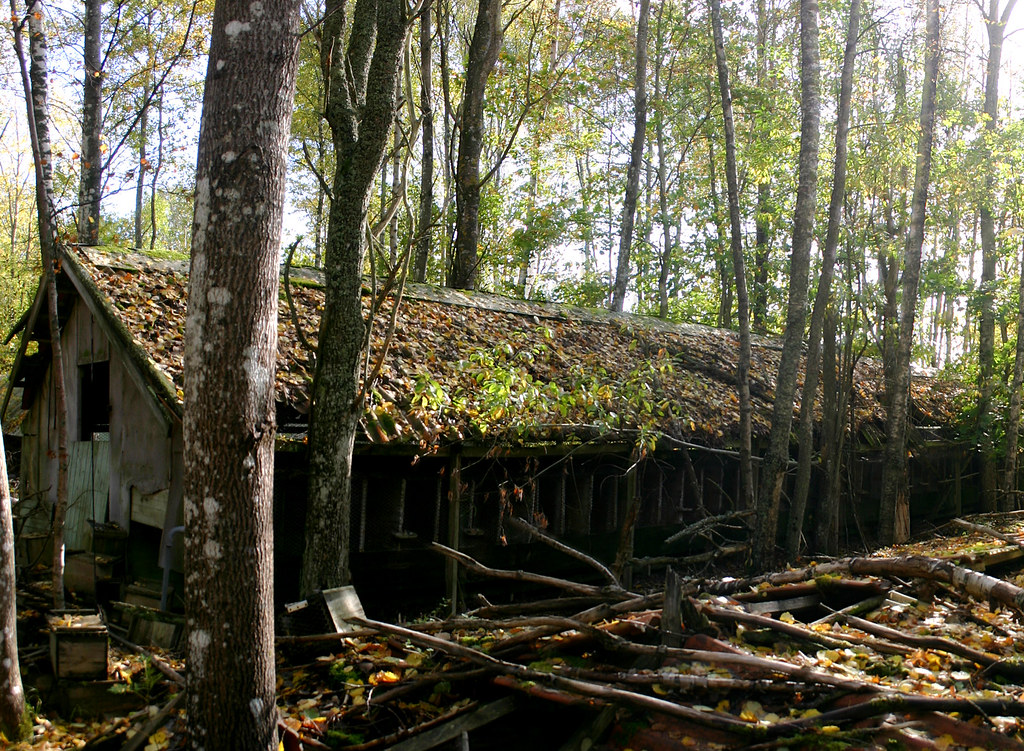 The Abandoned Mink Farm
